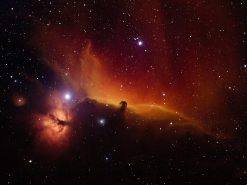 Horsehead Nebula in Synthetic Color